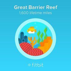 #greatbarrierreef #fitbit by jtbrewer21 http://ift.tt/1UokkV2