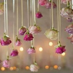 Wedding decorations romantic hanging flowers for 2019 Floral Wedding Decorations, Flower Decorations, Wedding Centerpieces, Wedding Flowers, Hanging Ceiling Decorations, Rose Wedding, Wedding Trends, Diy Wedding, Dream Wedding