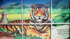 Bengal spice tiger artwork at the Celestial Seasonings factory, painted on window with quotation