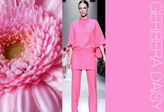 S/S 2014 Color Trends