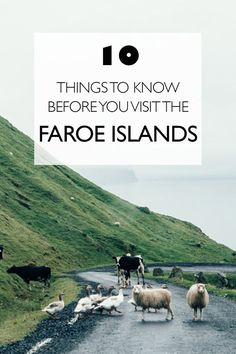 10 Things To Know Before You Visit The Faroe Islands | Europe