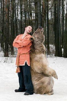 Фотографии моделей с 650-килограммовым медведем в заснеженном лесу медведь, фото