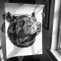 Luke Dixon - BEAR NO.12 - LIMITED EDITION A3 PRINT