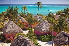 Matachica Beach resort in Belize.Belize is lookin like a good choice Belize Hotels, Belize Vacations, Caribbean Beach Resort, Beach Resorts, Hotels And Resorts, Luxury Hotels, Inclusive Resorts, Vacation Resorts, Dream Vacations