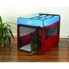 guardian gear red blue extralarge collapsible dog crate