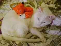 Ganchitos: Un zorro dormilón Lana, Pokemon, Dolls, Animals, Angel, Nature, Free Pattern, Crochet Free Patterns, Crochet Animal Amigurumi