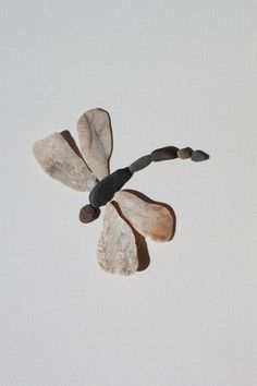Pebble Art of NS by Sharon Nowlan; lovely... absolutely lovely