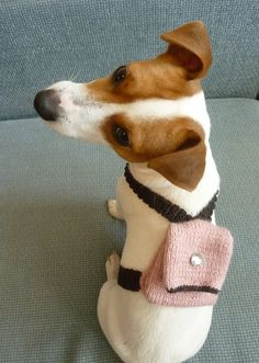 Prudence totally needs a back pack for next fall when she comes with me to college ;)