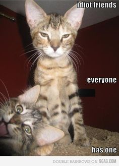 Hmmm, sometimes we just need to be in the picture!