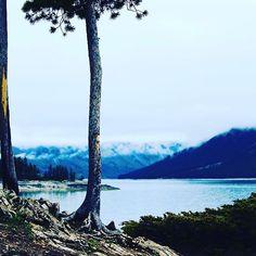 【michu_kobu】さんのInstagramをピンしています。 《なつかしーなー#カナダ#canada#岩 #森 #forest #banff #バンフ#山 #木 #湖#空#自然#mountains#tree#sky  #mountain#trees#lake#nature#石 #canon#canoneoskissx7 #camera #楽しかった#一眼レフ#寒かった#photo#写真#》