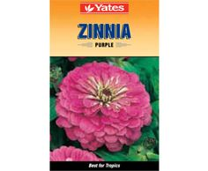 Yates Purple Zinnia
