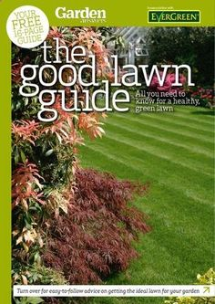 Garden Tips - Lawn care supplement Now is the time to start looking after the lawn so this summer is beautiful. That's why I'm going to start explaining how to start keeping it.
