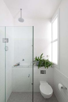 bathroom inspiration tiny wet room walk in shower Looking to update your bathroom? Feast your eyes on these beautiful bathroom inspiration pictures for fresh ideas. Wet Room Bathroom, Tiny Bathrooms, Simple Bathroom, Bathroom Interior, Modern Bathroom, Bath Room, Bathroom Ideas, Basement Bathroom, Small Apartment Bathrooms