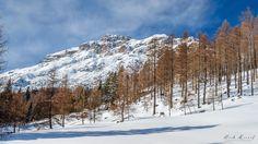 wonderful Tirol by Mark 1980 - Photo 98036297 - 500px