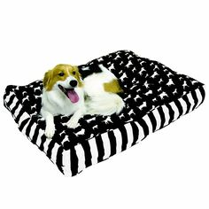 Happy Hounds Buster Small 24 by 36-Inch Dog Bed, Black/White >> Wow! I love this. Check it out now! : dog beds
