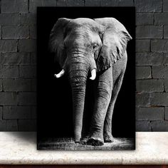Black and White Elephant Painting,Modern Home Decoration Canvas Art Printing,Printed Poster Prints From Custom Pictures Black Canvas Paintings, Canvas Artwork, Canvas Art Prints, Wall Canvas, Elephant Afrique, White Art, Black And White, Black Paper Drawing, Elephant Pictures