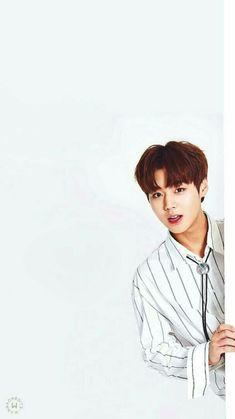 Park Jihoon Wanna One Produce 101 Season 2 Lockscreen Kpop, Cho Chang, Lai Guanlin, Ha Sungwoon, Korean Star, Korean Celebrities, 3 In One, Jinyoung, Handsome Boys