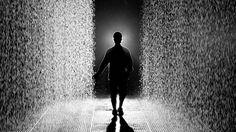 Mystical Indoor Rain Room Where Visitors Don't Get Wet - My Modern Met