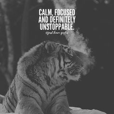 There's no way to describe myself better. #justbravequotes #calm #focus #unstoppable #chill #quote #quotes #motivation #inspiration #hustle #grind #work #entrepreneur