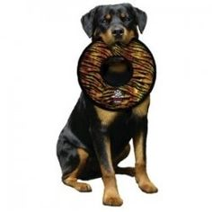 Why Some Dogs Prefer Soft Dog Toys