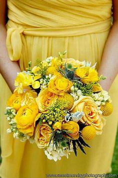 A Mostly Yellow Bridesmaid's Bouquet: Blue Eryngium Thistle, Yellow Roses, Yellow Craspedia, Yellow Ranunculus, Yellow Freesia, Yellow Solidago, White Stock, Dusty Miller