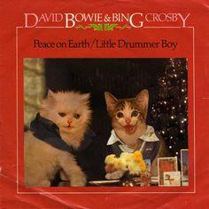 Peace on Earth/Little Drummer Boy kitten cover