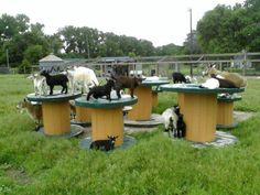 Goat play ground :)  would love a bunch of these old industrial cable spools  for my future herd of goats