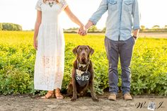 Natalie & Danny's Save the Date shoot, with their dog - Sammy!