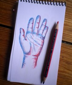 sketching hands by Laura Klamburg