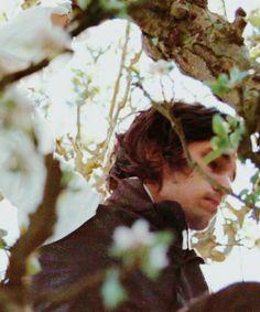 Ben Whishaw, John Keats - Bright Star directed by Jane Campion (2009) #johnkeats #janecampion #fannybrawne