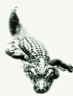 Alligator by Gregory Dyer Alligator Tattoo, Body Art Tattoos, Print Tattoos, Tatoos, Krokodil Tattoo, Crocodile Illustration, Reptiles, Amphibians, Crocodiles