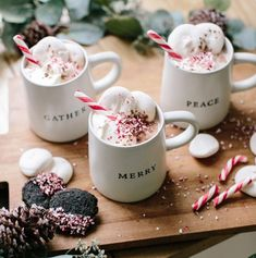 Festive Winter Drinks For Serving A Crowd – This Boozy Peppermint Hot Chocolate Is Sugar, Spice, & Everything Nice - Camille Styles Christmas Drinks, Halloween Drinks, Noel Christmas, Christmas Treats, Christmas Baking, Christmas Cookies, Xmas, Winter Christmas, Christmas Decorations