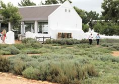Pictures: Babyl's beautiful bounty South Africa, Cape, Southern, House Styles, Places, Pictures, Travel, Beautiful, Mantle