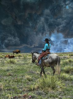Cowgirl looking at buffalo in the face of an oncoming storm.