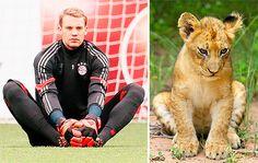 Manuel Neuer sits like a cat