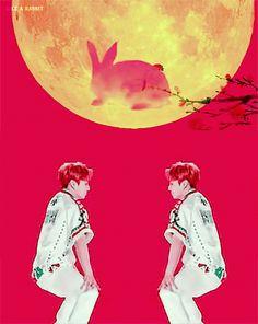 Jungkook is my spirit animal ❤ Bts Memes, Memes Gifs, Jungkook Oppa, Bts Bangtan Boy, Namjoon, Got7 Bambam, Taekook, K Pop, Taehyung