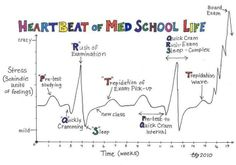 Heartbeat/ ECG of medical student Pa School, School Humor, Medical School, School Life, School Stuff, Medical College, Med Student, Student Life, Student Quotes