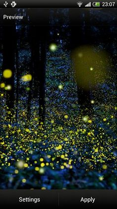Search Results For Fireflies Live Wallpaper Free Adorable Wallpapers