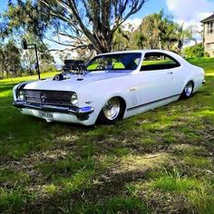 Happy Easter to all 🐣 Australian Muscle Cars, Aussie Muscle Cars, My Dream Car, Dream Cars, Holden Monaro, Holden Australia, Amazing Cars, Cars And Motorcycles, Triumph Motorcycles