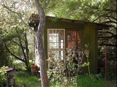 this could be my hideout!  Build a shed around discarded full windows!