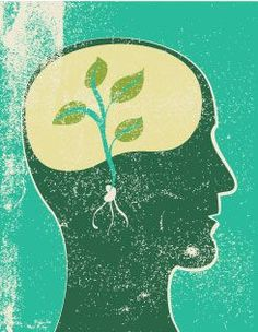 Neuroplasticity: Learning Physically Changes the Brain: How lessons and…