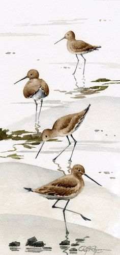 Set of 2 Sand Pipers Art Prints  Watercolor by DJRogersWatercolors