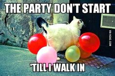 The party don't start till I walk in @Danielle F