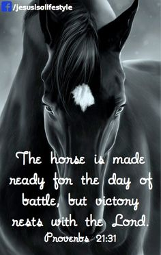 This scripture for the horse barn. Favorite Bible Verses, Bible Verses Quotes, Bible Scriptures, Equine Quotes, Equestrian Quotes, Inspirational Horse Quotes, Horse Riding Quotes, Racing Quotes, Country Girl Quotes