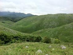 山口県 秋吉台  Akiyoshidai is the largest karst plateau in Japan.