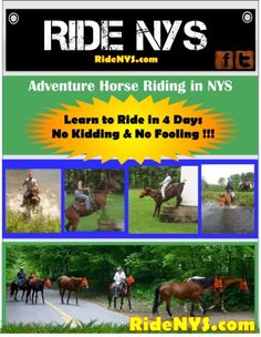 "Adventure Horse Riding in NYS Learn to Ride in 4 Days  If you are the best ""horseback rider"" in the world  and have ""marvelous"" form BUT you can't get your horse  to do what you want him to do, then it just doesn't matter how beautifully you ride, does it? This is what many folk  are so clueless about.  If you boil it right down to the nuts & bolts - riding a horse is simply keeping the horse between you & the ground.  In other words, not crashing !!!   That is it !"