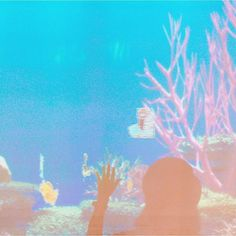 【ryok_a】さんのInstagramをピンしています。 《楽しかった金魚展😂🙌自分の描いたイラストがスクリーンの中で泳いでる🐠 ・ ・ ・ #時之栖#御殿場#水中楽園#金魚#アクアリウム#イラスト#泳いでる#goldfish#aquarium#illustration#swimming#enjoy》
