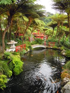 The Monte Palace Tropical Garden in Funchal, Madeira, is a true garden of Eden where you can spend a whole day in amazement.