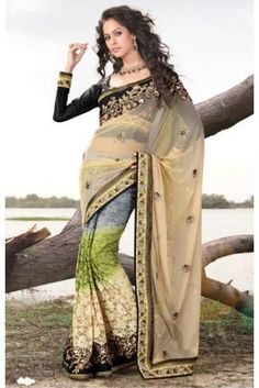 Desert Sand with Multicolour Net Saree