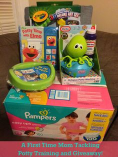 First Time Mom and Losing It: A First Time Mom Tackling Potty Training and Givea...